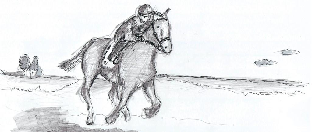 horse 10x23.5